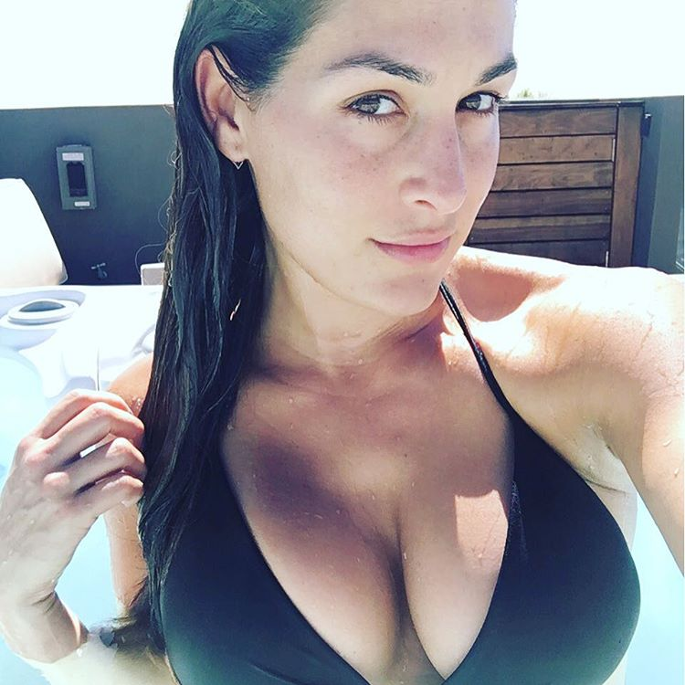 Nikki-Bella-Cleavage